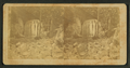 View in Cardiff Glen, near Fort Dodge, Iowa, from Robert N. Dennis collection of stereoscopic views.png