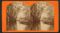 View of the Oklawaha River, Florida, from Robert N. Dennis collection of stereoscopic views.png