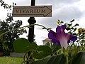 Vivarium, Muzeu Oradea.jpg