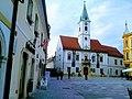Vjećnica, Trg Kralja Tomislava 2.jpg