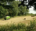 Waiting for the tractor - geograph.org.uk - 1492973.jpg