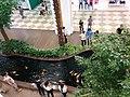 Water basin inside Royal City mall with fish.jpg