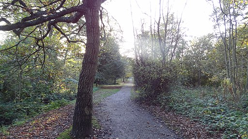 Watling Chase Timberland Trail in Shenley Park 2