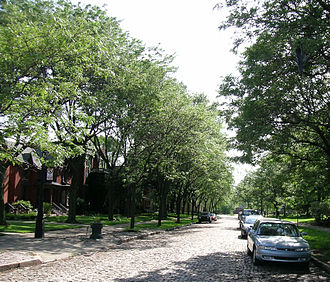 West Canfield Historic District - West Canfield streetscape