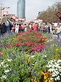 Wga rally flowerbed - protesters - century city.JPG