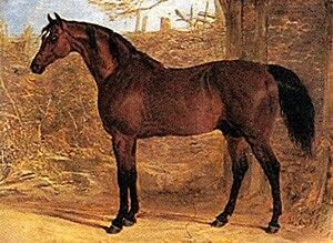 Whisker (horse) - Whisker by John Frederick Herring, Sr., c. 1820.