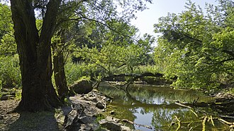 Prater - Mauthnerwasser (remnant of a canal)
