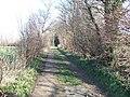 Willow Lane, Kirkthorpe - geograph.org.uk - 365514.jpg