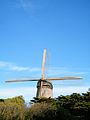 Windmill - SF - Stierch B.jpg