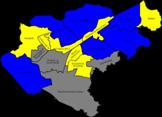 2008 Woking Borough Council election