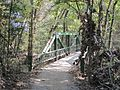 Wolf River Trails Lucius Burch Natural Area Memphis TN 04.jpg