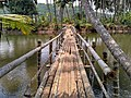 Wooden bridge entrance Palayi Kadavu- photo from travalour.jpg