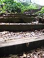 Wooden steps 2.jpg