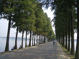 East Lake (Wuhan)