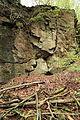 Wuppertal - Zu den Dolinen - Dolinengelände 10 ies.jpg