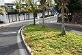 Yaiza Puerto Calero - Calle Alegranza - Aptenia cordifolia 02 ies.jpg