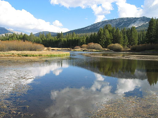 Yosemite-tuolumne meadows 1
