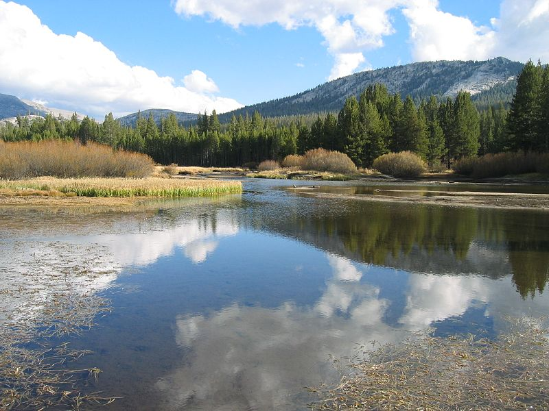 File:Yosemite-tuolumne meadows 1.jpeg