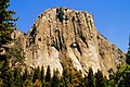 Yosemite Nat 6.jpg