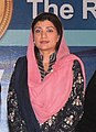 Zardari clinton bhutto foundation women (cropped).jpg
