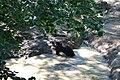 Zoologická zahrada Tábor - Větrovy (39).jpg