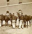 (NL c.1900) Exercise Horse Artillery Corps, Pict. AKL092058.jpg