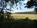 +20180611Müritz-Nationalpark.nahe Kratzeburg.-052.jpg