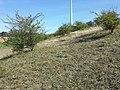 Äußere Heide nordöstlich von Schrick sl2.jpg
