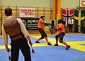 Örebro Open 2015 52.jpg