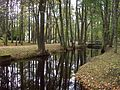 Ķemeri park - panoramio - Paul Berzinn (1).jpg