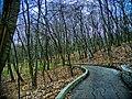 Історична місцевість-парк Аскольдова могила, Київ.jpg