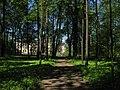 Вид на Большой дворец из Верхнего Голландского сада (Гатчина) - 2008.05.24.jpg