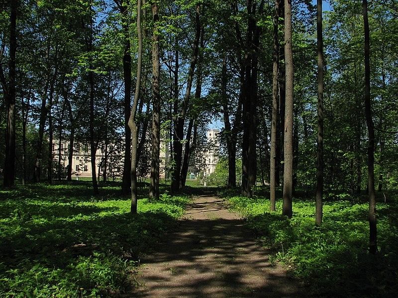 File:Вид на Большой дворец из Верхнего Голландского сада (Гатчина) - 2008.05.24.jpg