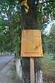 Вул. Пирогова, 109 DSC 0955.jpg