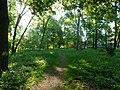 Графський парк (парк Ніжинського педінституту), Ніжинський район, м. Ніжин 74-104-5004 05.JPG