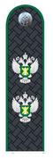 Действительный гос.советник РФ 2 класса Россельхознадзор.png