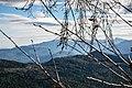 Кавказский заподведник, вид с плато Лаго-Наки.jpg