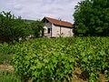 Кућа у Ораховцу.jpg