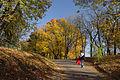 """Парк """"Високий Замок"""" восени.JPG"""