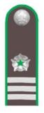 Советник гос.гражданской службы РФ 3 класса (Россельхознадзор).png