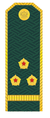 Старший лейтенант ФТС РФ.png