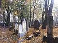 בית הקברות היהודי בקרקוב - קברים (5).jpg