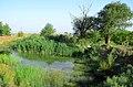 برکۀ کنار آرامگاه زنده یاد فریدون فروغی - panoramio (1).jpg