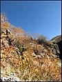 زیباییهای دره آشان - panoramio (3).jpg