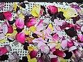 گلبرگ های خشک شده - panoramio.jpg