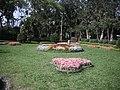 士林官邸20080406 - panoramio - Tianmu peter (5).jpg