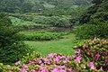 大屯自然公園 Datun Natural Park - panoramio.jpg