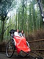 嵐山竹林小徑 Arashiyama Bamboo Grove Trail - panoramio.jpg