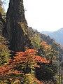日原-01 - panoramio.jpg