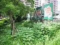 松德公園旁景觀 - panoramio - Tianmu peter (60).jpg